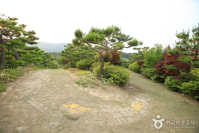 Theme Botanic Gardens & Arboretum (울산테마식물수목원)