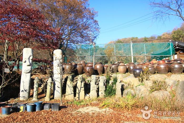 장흥감나무집