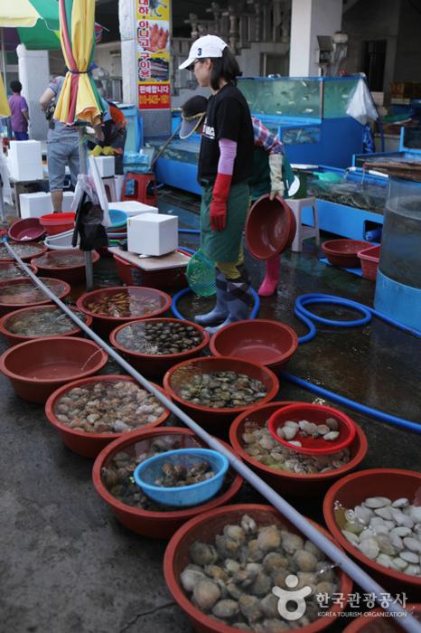 舒川洪元港 自然産コノシロ・ワタリガニ祭り(서천 홍원항 자연산 전어·꽃게 축제)