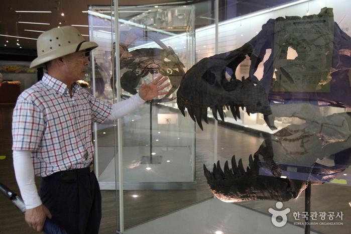Музей естествознания Мокпо (목포자연사박물관)4