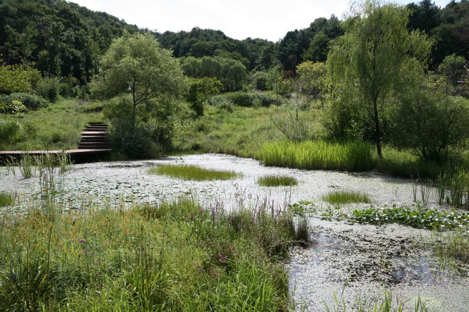 12개 테마 공간으로 꾸민 평강식물원