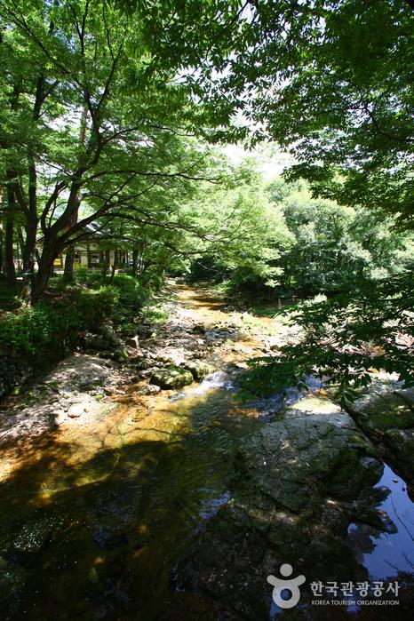 Pic de Songnisan Munjangdae (Sangju) (속리산국립공원 문장대)