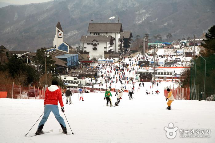 Deogyusan Ski Resort (무주덕유산리조트 스키장)