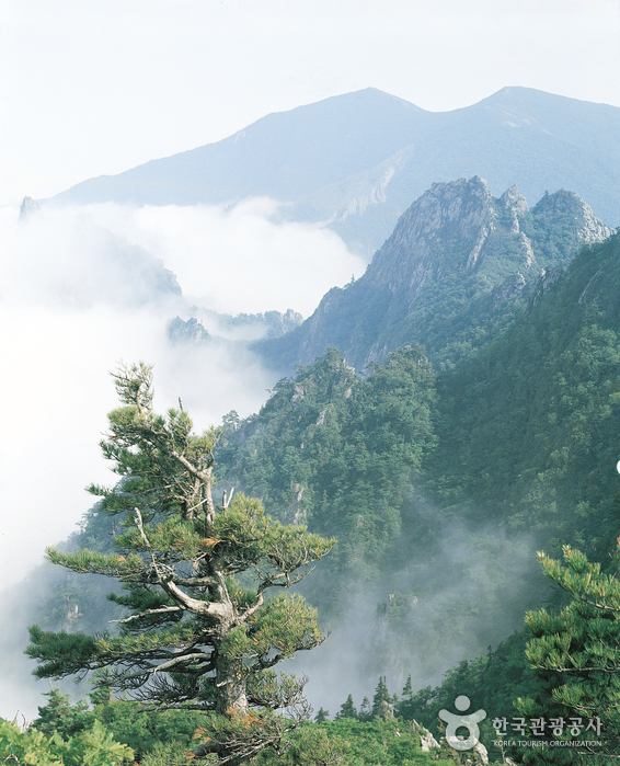 Seoraksan National Park (OeSeorak) ( - )