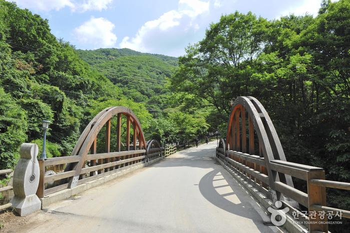 Erholungsbergwald Yumyeongsan (유명산자연휴양림)