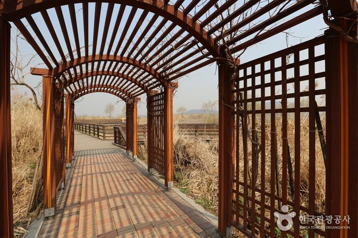 Feuchtbiotop Gangseo (강서습지생태공원)