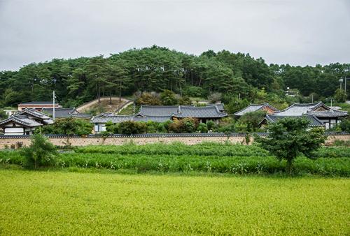 Hakbong Head House(학봉종택)[한국관광품질인증/Korea Quality]