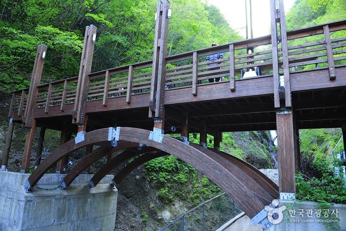 Bongnaepokpo Falls-Ulleungdo-Dokdo Geopark (봉래폭포-울릉도, 독도 국가지질공원)