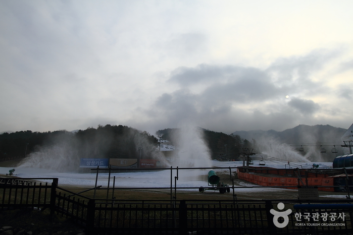 Ski-Resort Bears Town (베어스타운리조트 스키장)