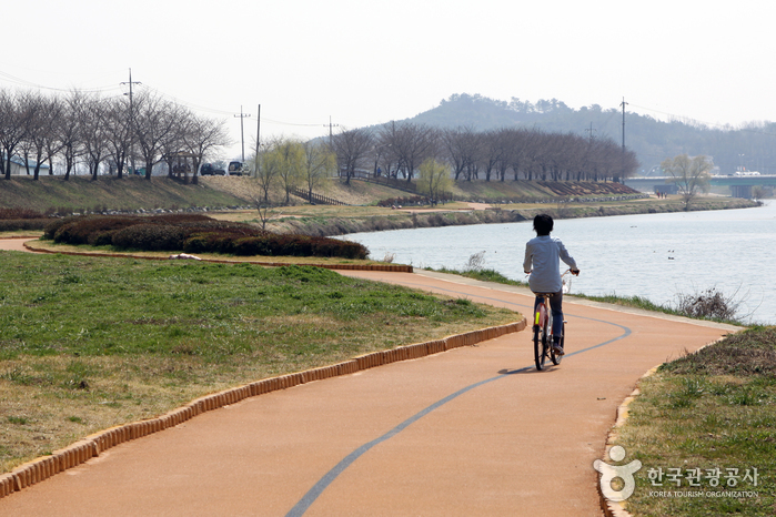 봄꽃이, 강바람이 들뜬 마음의 페달을 밟아 자전거로 즐기는 순천의 봄