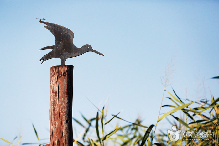 갈대밭을 거닐다 만나는 철새 조형물. 신성리 갈대밭은 철새 군락지로도 유명하다