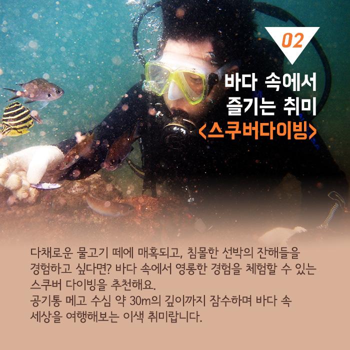 02. 바다 속에서 즐기는 취미 스쿠버다이빙. 다채로운 물고기 떼에 매혹되고, 침몰한 선박의 잔해들을 경험하고 싶다면? 바다 속에서 영롱한 경험을 체험할 수 있는 스쿠버 다이빙을 추천해요. 공기통 메고 수심 약 30m의 깊이까지 잠수하며 바다 속 세상을 여행해보는 이색 취미랍니다.