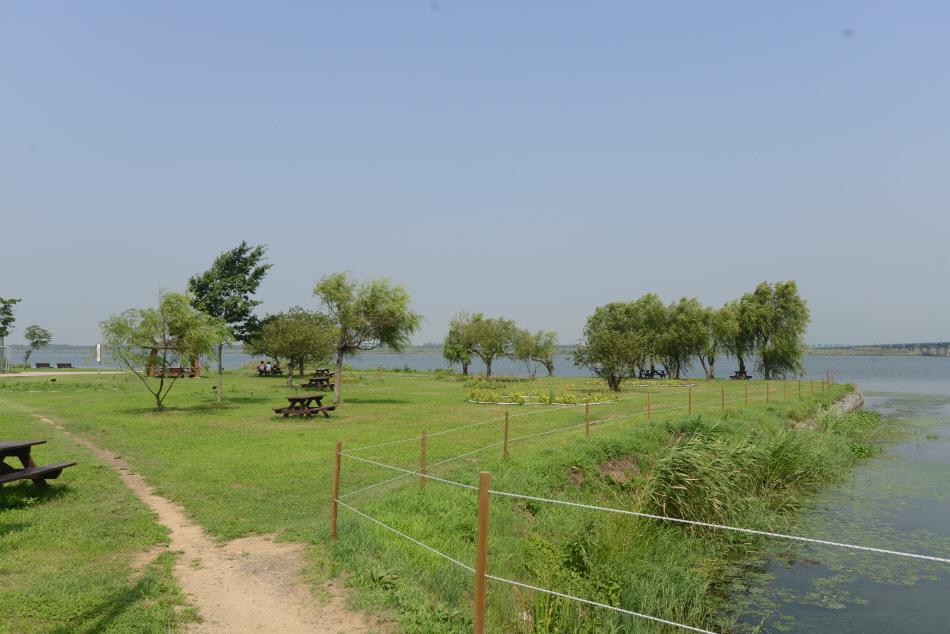 삼락둔치의 풍광. 낙동강에 접한 너른 초지대가 목가적이다. 곳곳에 바비큐용 테이블 세트가 놓여 있다.