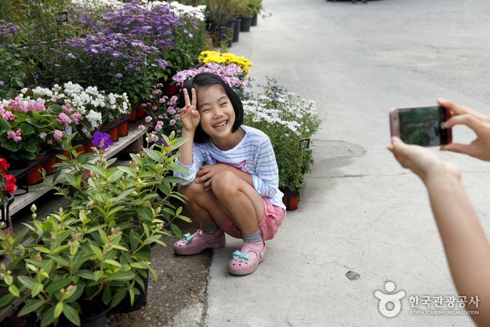 뜰과숲원예점 꽃밭에서 사진을 찍고 있는 소녀