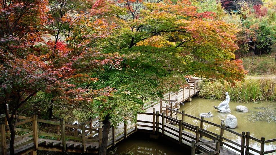 가을빛이 완연한 아차산생태공원 _사진 제공 광진구청