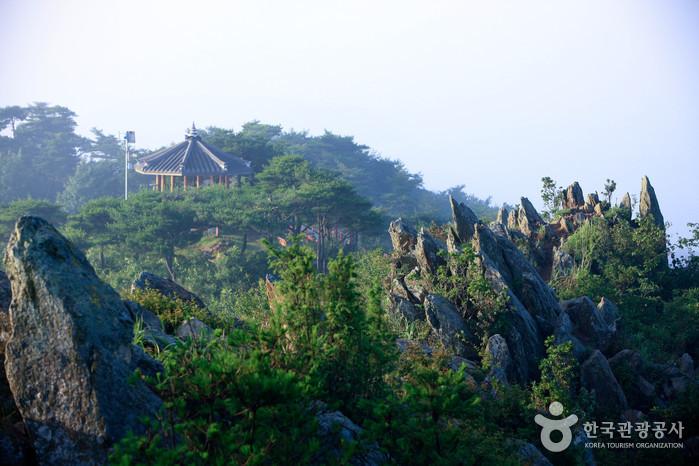 Daeijakdo Island (대이작도)