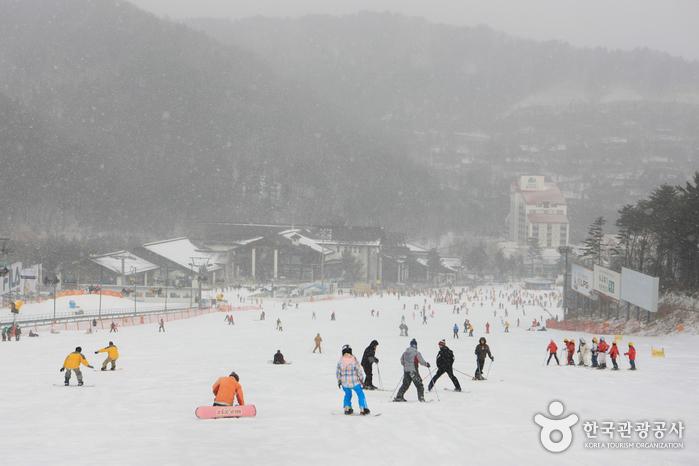 Yongpyong Ski Resort (용평리조트 스키장)