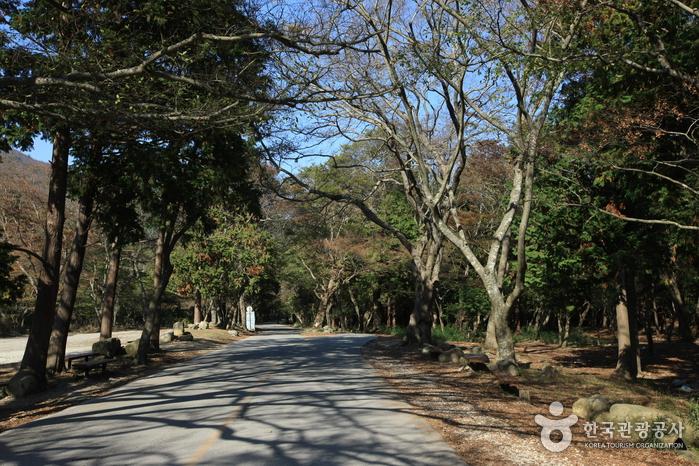 頭輪山道立公園(두륜산도립공원)