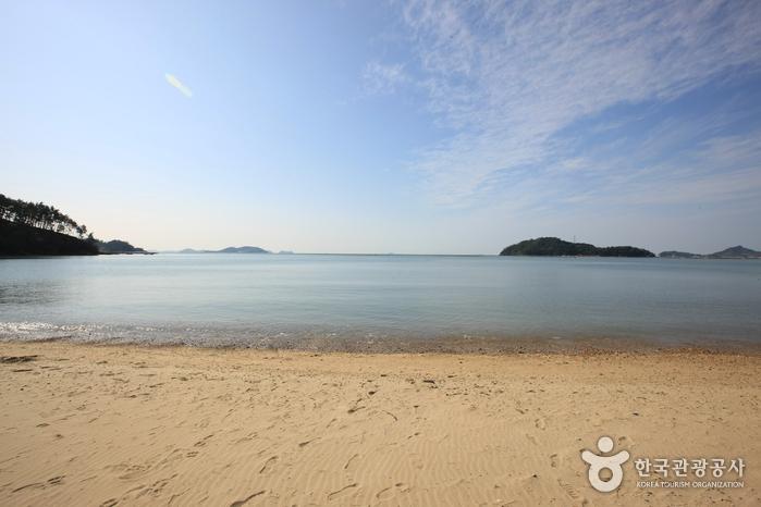 Пляж Сонхо (송호해수욕장)4