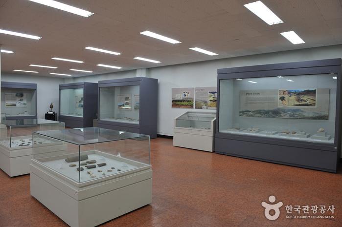 인하대학교 박물관