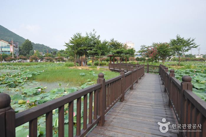 Jeonpyeongje Reservoir (전평제)