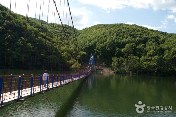 Cheonjangho Lake (천장호)