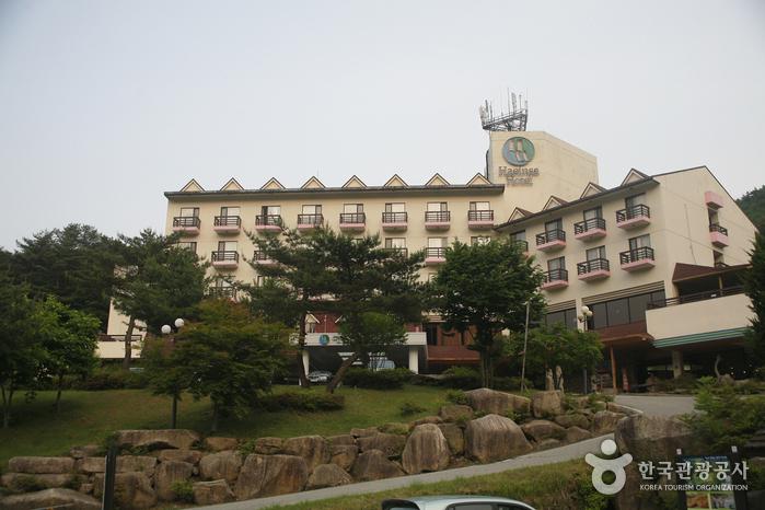 海印寺观光酒店<br>(해인사관광호텔)