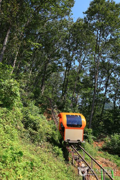 清風湖觀光單軌列車(청풍호 관광모노레일)