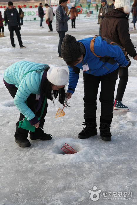 Hwacheon Sancheoneo (Mountain Trout) Ice Festival (얼음나라 화천 산천어축제)