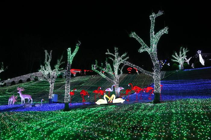 청도프로방스 별빛동화마을 빛축제 2017 사진7