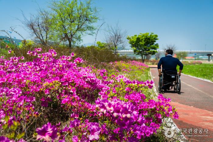 합천군문화예술회관 인근 공원