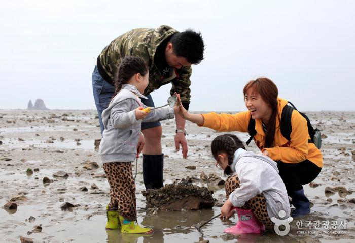 갯벌체험중인 가족