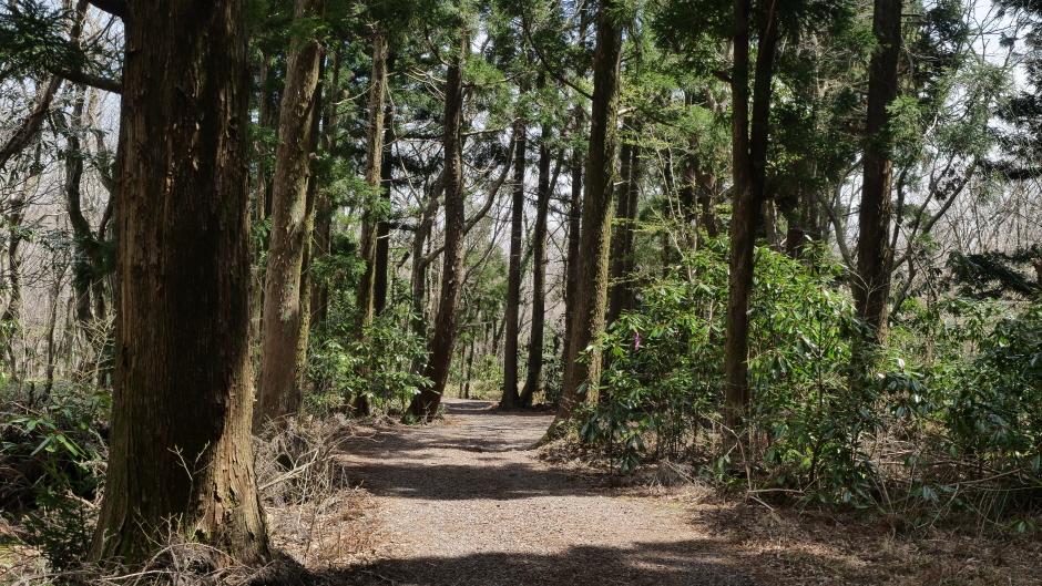 Nationalpark Hallasan (한라산 (제주도 국가지질공원))