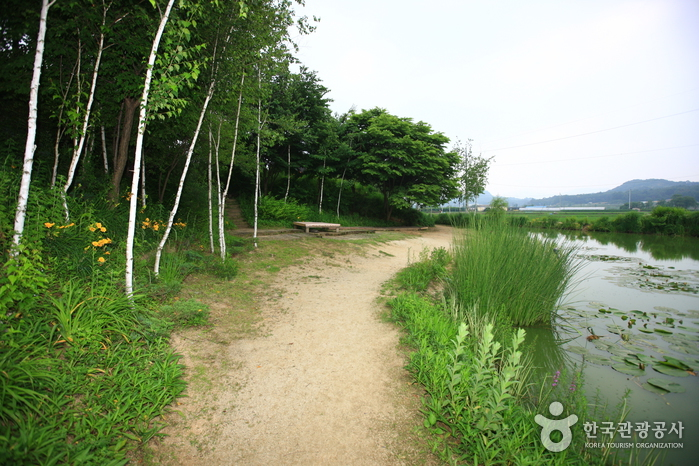 Trash: Pocheon View Garden (포천 뷰식물원)