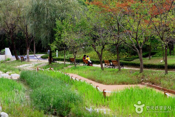 京畿道立ムルヒャンギ樹木園(경기도립 물향기수목원)
