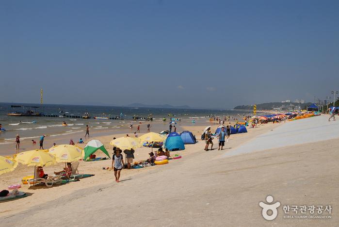 Daecheon Beach (대천해수욕장)