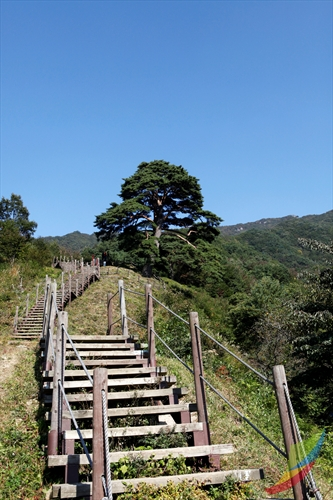 Jirisan National Park (Namwon) (지리산국립공원 (남원)