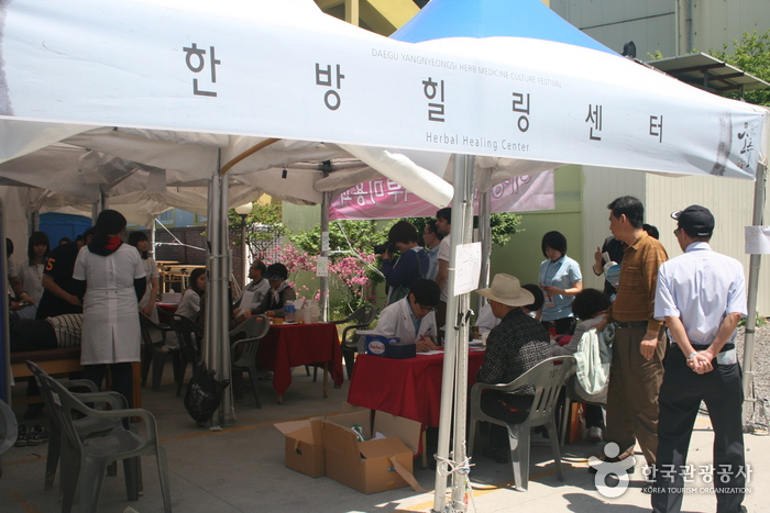 Daegu Yangnyeongsi Herb Medicine Festival ( )