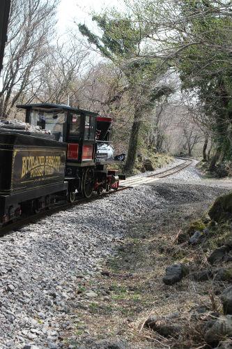 곶자왈을 달리는 에코랜드 기차