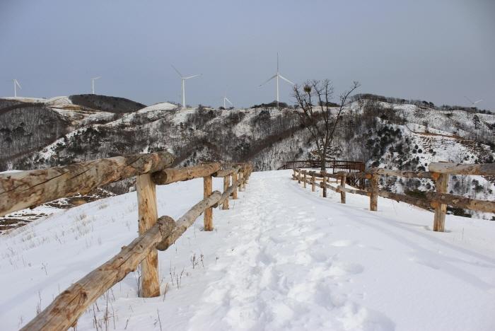 Снежная деревня в Тэгваллёне (대관령 눈꽃마을)4