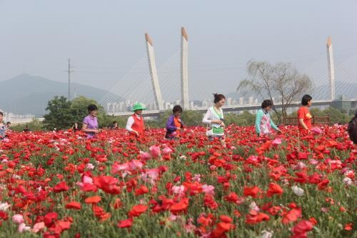Dream Park (드림파크)
