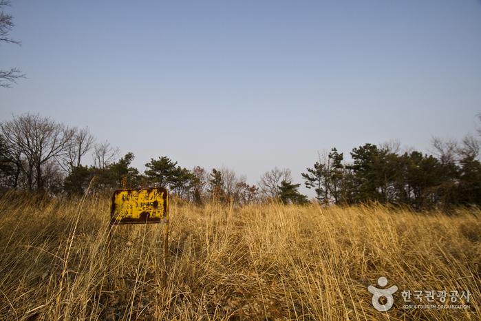 언덕 정상 헬기장