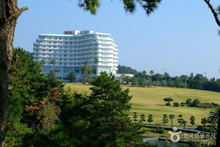 西归浦KAL酒店<br>(서귀포KAL호텔)