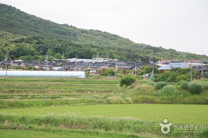 Sunchang Gochujang Village (순창전통고추장마을)