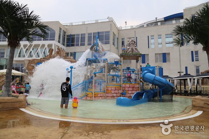 아쿠아월드 실외 수영장