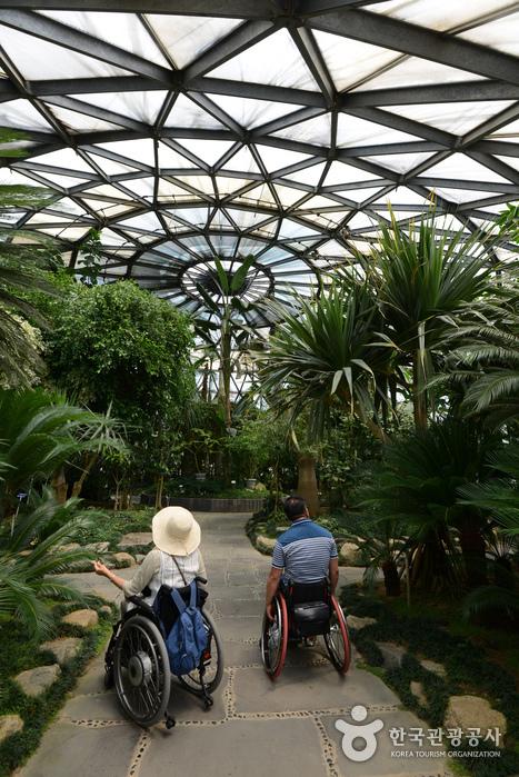 열대식물원 유리온실