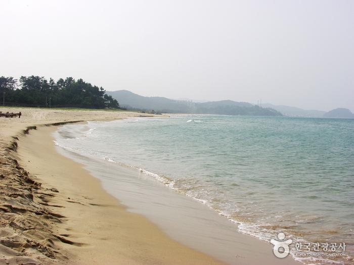 南涯海岸(南涯1・3里)(남애해변(남애1, 3리))