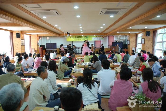 Wildteefestival Hadong (하동 야생차문화축제)