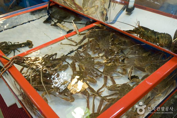 チャガルチ市場 活魚部(자갈치시장 활어부)