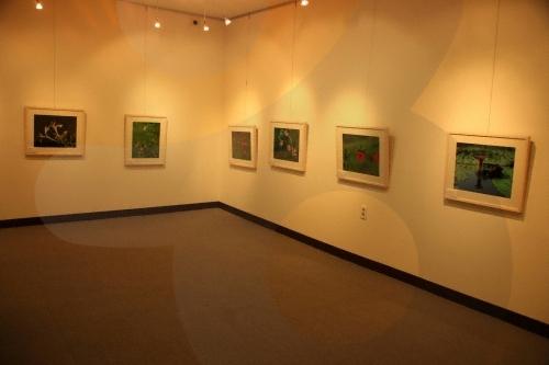 Public Cheongsong Yasong Art Gallery (군립 청송야송미술관)